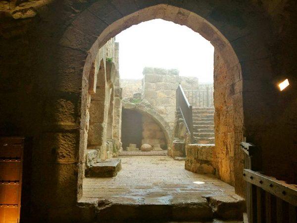 vista della terazza del castello di ajlun in giordania