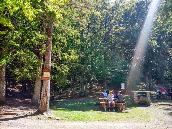 area-picnic con persone sedute ad abetone