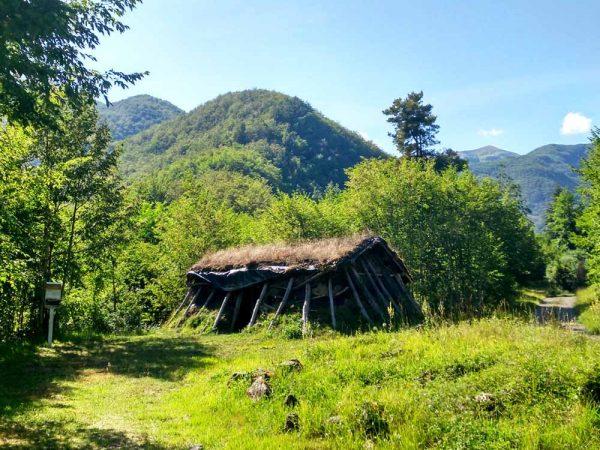 capanna del carbonaio circondata dalla foresta