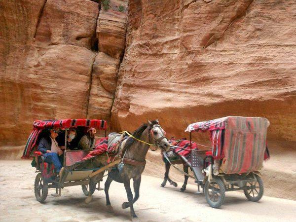 carretti con cavalli nel canyon di petra