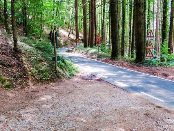 sentiero sterrato che si immette su strada asfaltata nel bosco