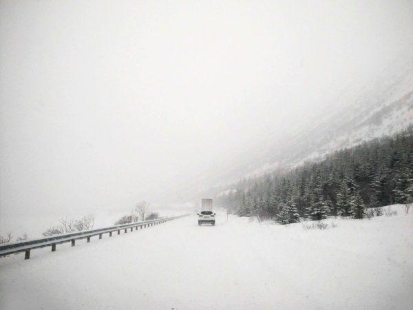 guidare-lofoten-con-nebbia