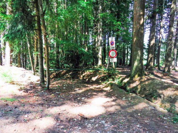 sentiero nel bosco delimitato dalla sbarra
