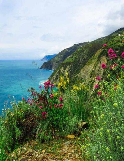 liguria montagna a picco sul mare ricoperta dalla vegetazione