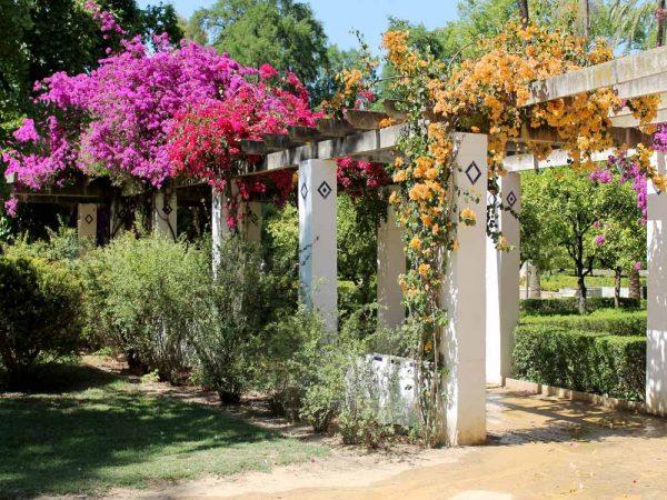 veranda decorata con rose all'interno del parco maria di luisa