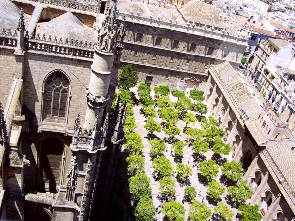 vista sul patio di naranjos dai tetti della cattedrale di siviglia