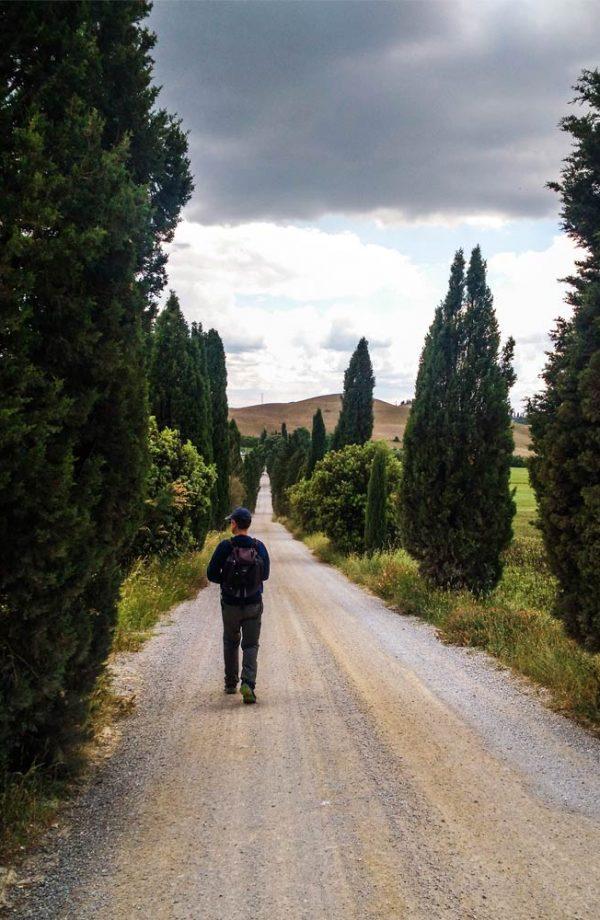 persona che cammina su sentiero sterrato fiancheggiato dai cipressi