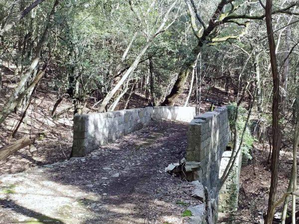 ponte in pietra nel bosco