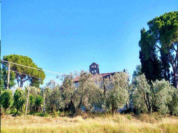 chiesa di san niccolo a scandicci tra gli ulivi