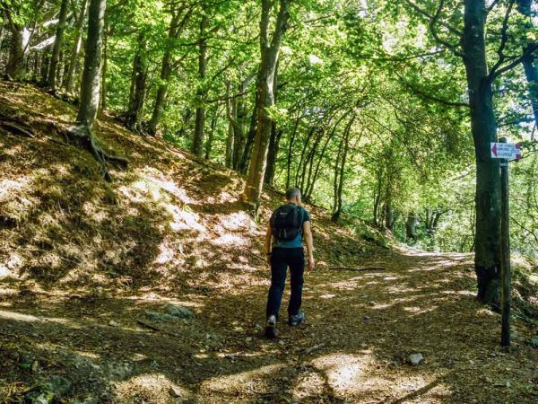 persona che cammina all'interno del bosco di acquerino
