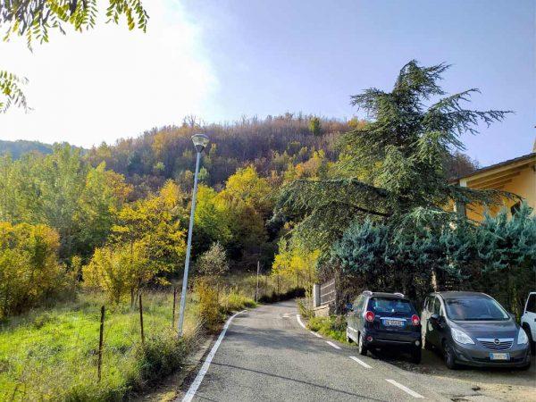strada asfaltata con macchine e casa sulla destra e il bosco sullo sfondo