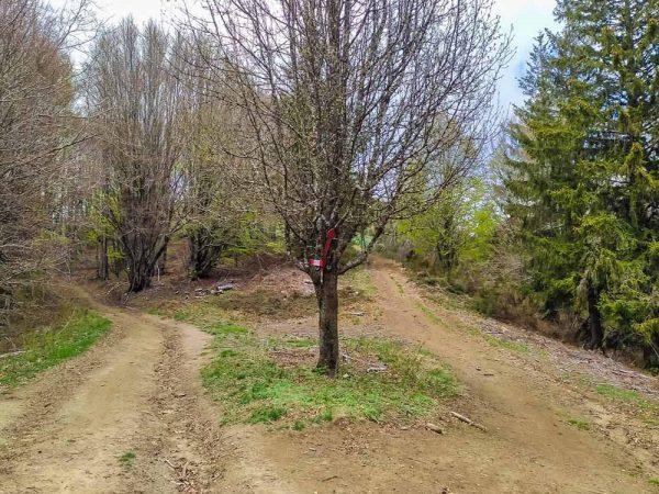 bivio sentiero per spada nella roccia su pratomagno