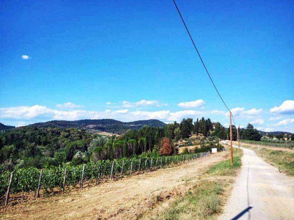 sentiero tra le colline verso il mulinaccio di scandicci