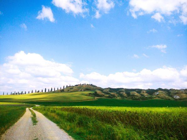 sentiero fiancheggiato dai prati verdi verso le biancane di leonina