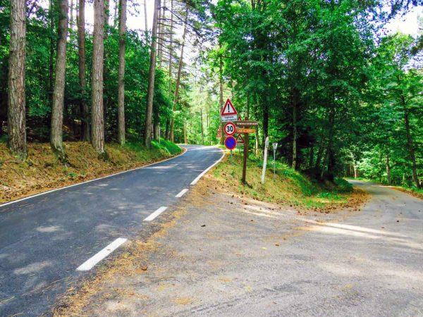 sentiero sterrato che si immette su strada asfaltata