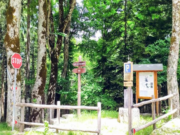 deviazione nel bosco per cappella gualberto marcata dai cartelli vivino all'abbazia di vallombrosa