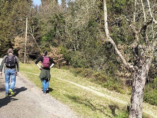 due persone su un sentiero accanto al bosco vicino a compiobbi